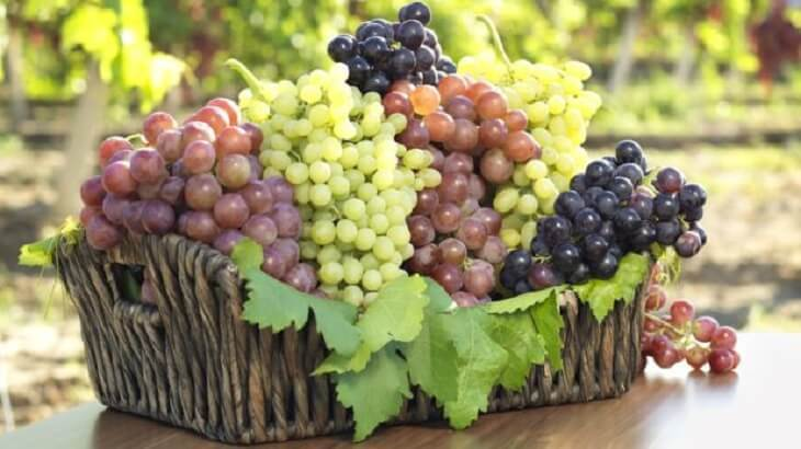 العنب قيمة غذائية مرتفعة وفوائد عديدة وبعض الأضرار