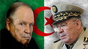 """هل تشهد الجزائر """"انقلاباً ناعماً"""" قريباً؟"""