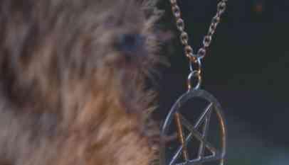 """كلب يقود بريطانية للعثور على رجال تمارس الجنس وسط """"طقوس شيطانية"""""""