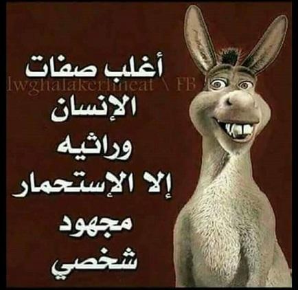 هروب خالد يوسف الى فرنسا بعد اعتراف منى فاروق وشيما بحقيقة الفيديو الاباحي !!
