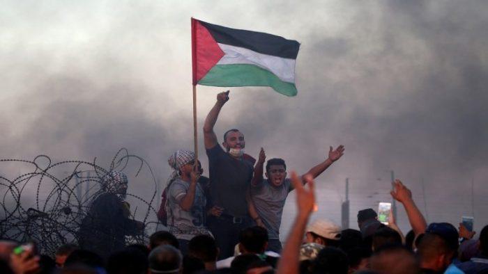 """""""وطن"""" الفلسطيني"""