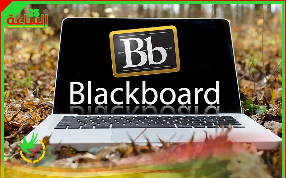 بلاك بورد Blackboard تعرف على كل التفاصيل