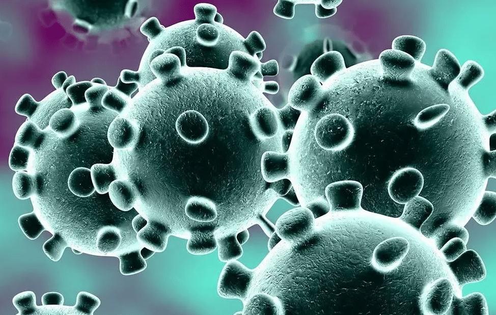 كيف تقوى مناعة طفلك ضد فيروس كورونا