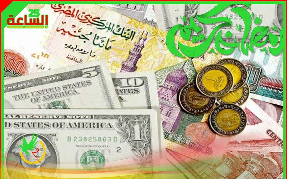 سعر الدولار امام الجنيه المصري يستقر بعد تراجع.. تعرف التفاصيل