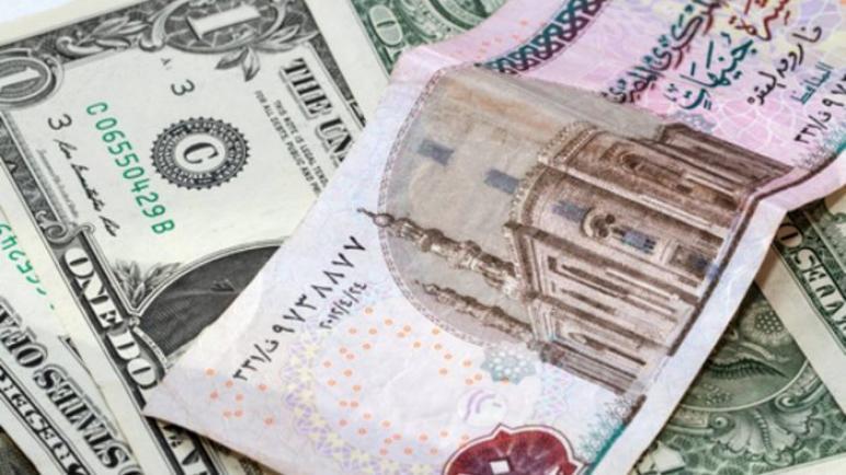 اسعار الدولار اليوم امام الجنيه المصري