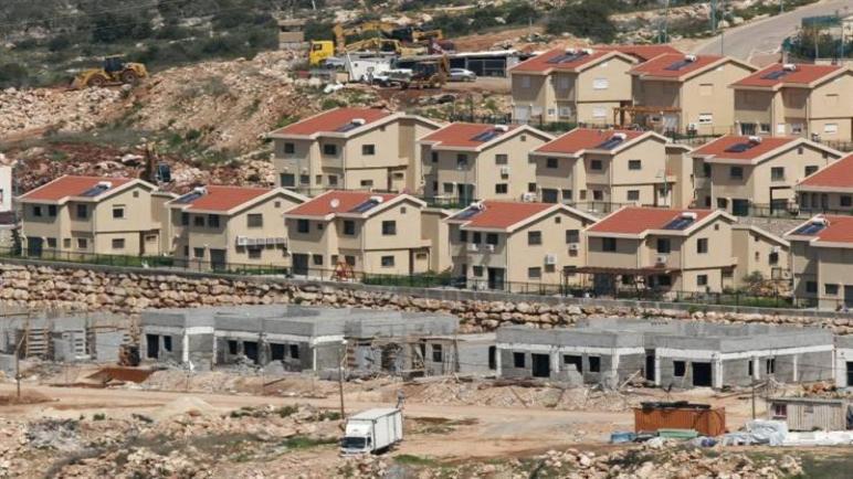 الأزهر: بناء المستوطنات استفزاز وتعدي على حقوق الفلسطينيين