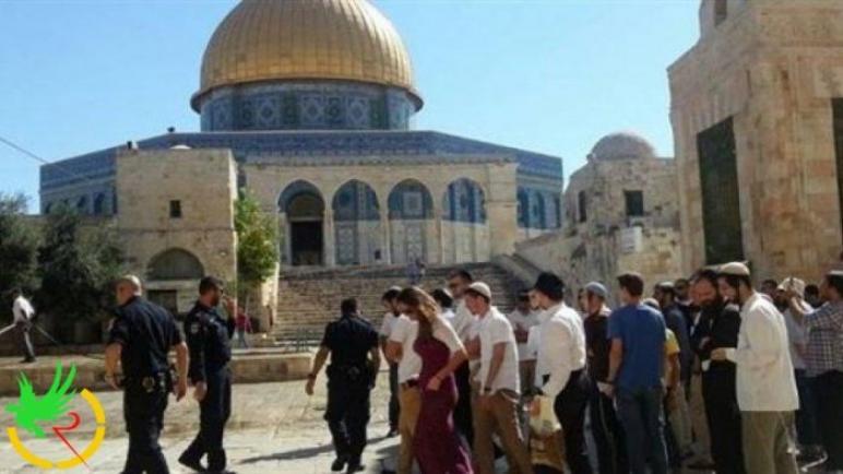 اقتحامات صهيونية للمسجد الأقصى المبارك